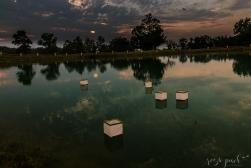 Diamond Links Pond